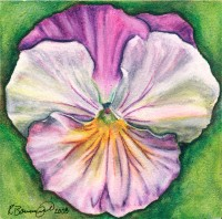 "Pansy I, 2008, Inktense and watercolor on aquaboard, 4""x4"". Copyright Rebe Banasiak, The Brush Hilt and Banasiak Art Gallery."