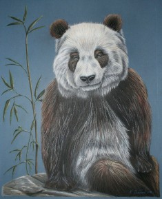 "Su Lin portrait VII, 2008, Pastel on matte board, 32""x42"". Copyright Rebe Banasiak, The Brush Hilt and Banasiak Art Gallery."