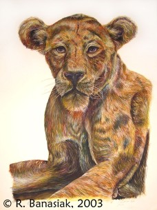 "Lioness I, 2003, Watercolor on paper, 15""x22"". Copyright Rebe Banasiak, The Brush Hilt and Banasiak Art Gallery."