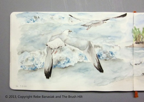 Seagulls, Journal book 2 page 24, 2013, watercolor.