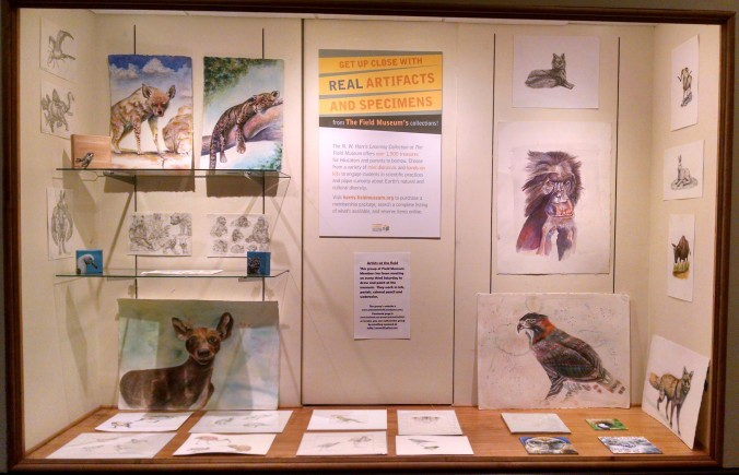 AAf member artwork in display case outside the Field Museum's Harris Education Center.