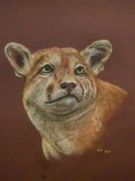 "Cougar, 2016, Pastel on paper, 19""x25"". Copyright Rebe Banasiak, The Brush Hilt and Banasiak Art Gallery."
